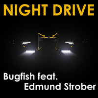 Bugfish / - Night Drive