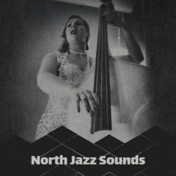 Various Artist - North Jazz Sounds