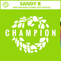 Sandy B - Ain't No Need To Hide (WZA Remixes)