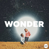 Various Artists - Wonder