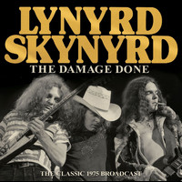 Lynyrd Skynyrd - The Damage Done