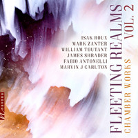 Various Artists - Fleeting Realms, Vol. 2