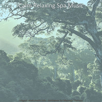Calm Relaxing Spa Music - Elegant Shakuhachi Solo - Ambiance for Massage Therapy