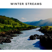 Creek Birds - Winter Streams
