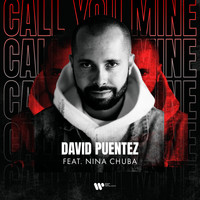 David Puentez - Call You Mine (feat. Nina Chuba)