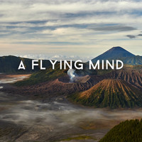 Peace Of Mind - A Flying Mind