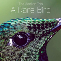 The Aeolian Trio - A Rare Bird