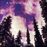 A Nation of Silence - The Taken