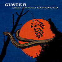 Guster - Emily Ivory