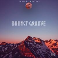 Various Artists - Bouncy Groove