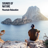Nature Sounds, Asian Zen Spa Music Meditation, Factorial FX - Sounds of Nature: Mountain Relaxation